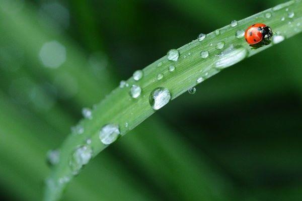 雨の日の子供との遊び