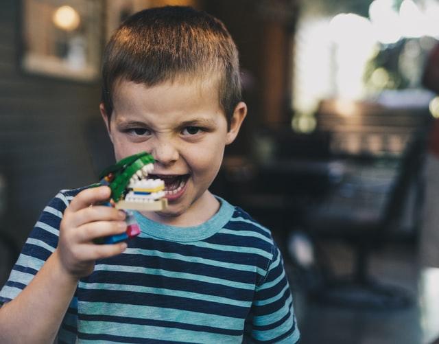 恐竜で遊ぶ男の子